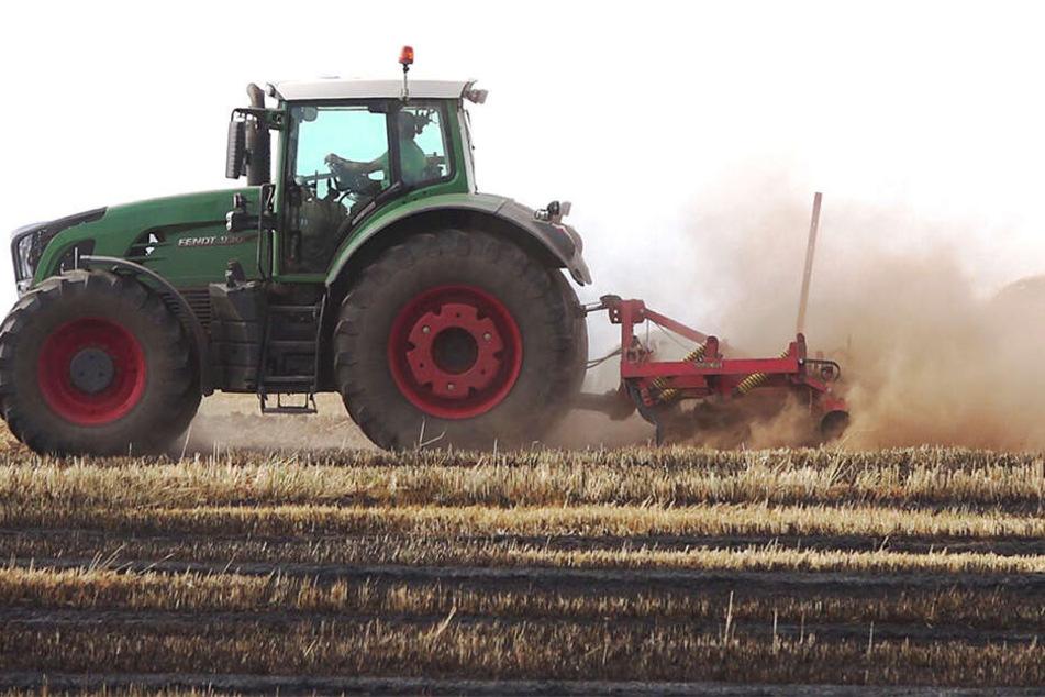 Die Bauern fuhren mit ihren Traktoren aufs Feld, um ein weiteres Asbreiten des Feuers bis zum Eintreffen der Feuerwehr zu verhindern.