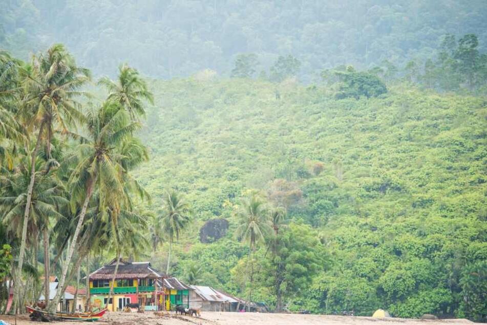 Im Urlauberparadies Sumatra wurden die beiden zuletzt gesehen. (Symbolbild)