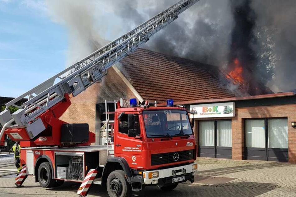 Firma fackelt bei Großbrand komplett ab: Halbe Million Euro Schaden!