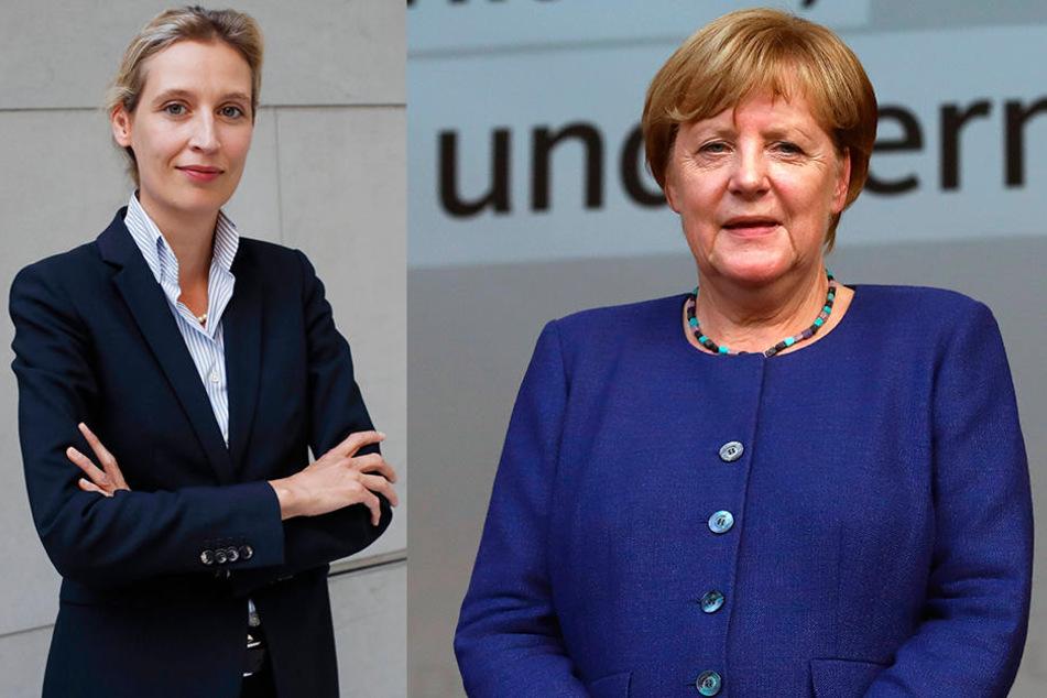 29. August: Veranstaltung mit Spitzenkandidatin Alice Weidel (li). Am 6. September: Kundgebung mit Kanzlerin Angela Merkel (re) in Torgau.
