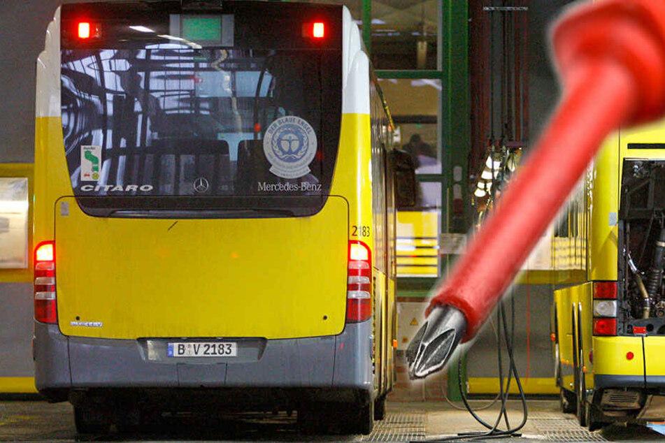Betrunkene randaliert und droht dem Busfahrer mit dem Tod