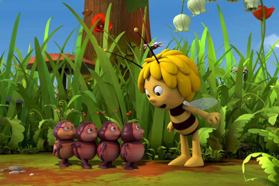 Die erste Staffel der 78-teiligen Animationsserie in 3D-Optik wurde ab März 2013 im ZDF ausgestrahlt.
