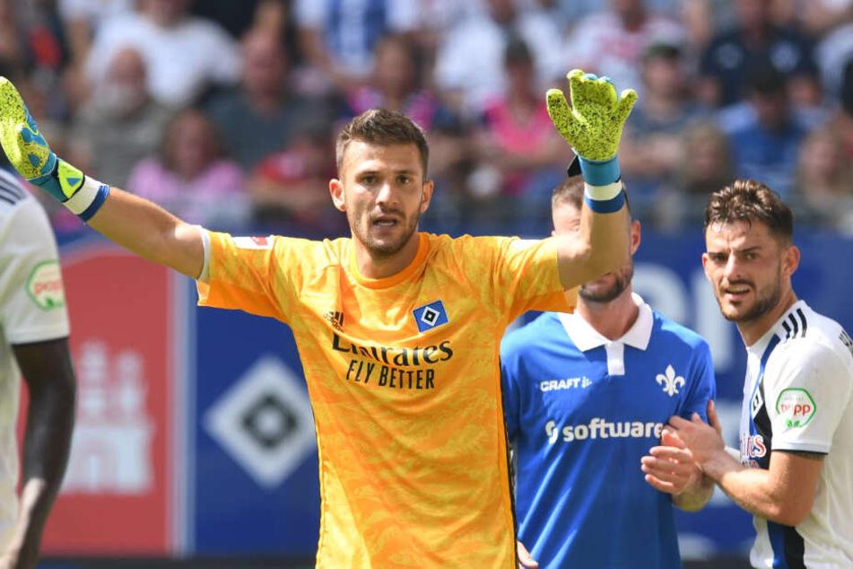HSV-Keeper Daniel Heuer Fernandes konnte bislang weitesgehend überzeugen.