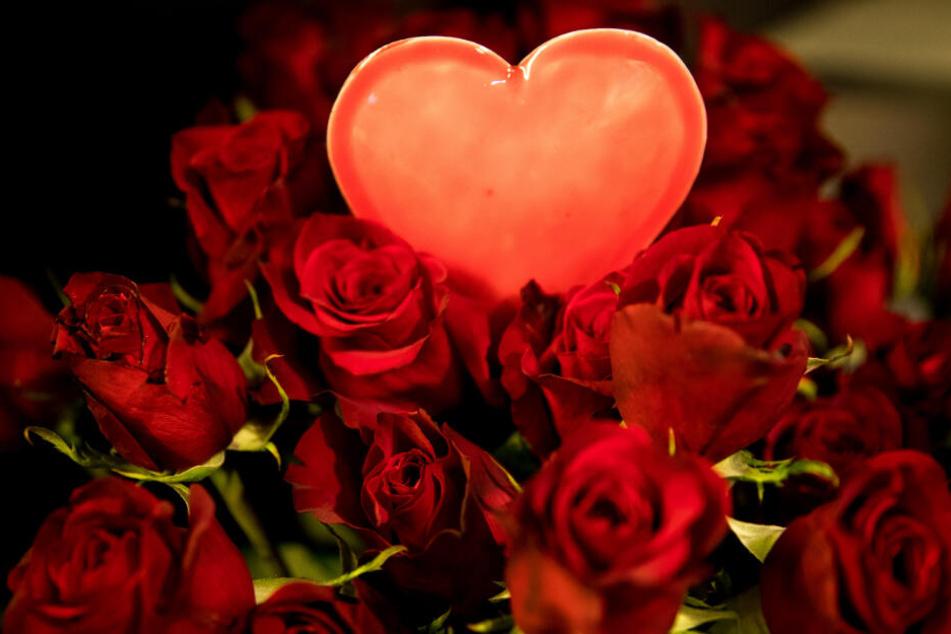 Am Valentinstag verschenken viele Männer rote Rosen.