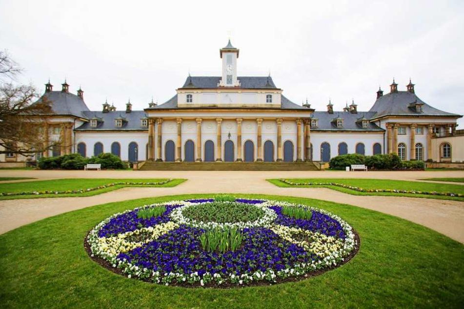 Schloss Pillnitz gehört zu den  beliebtesten Gartenanlagen in Sachsen.
