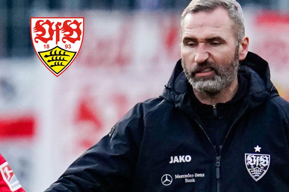"""""""Macht den VfB Stuttgart zur Lachnummer"""": Teile der Fans fordern Entlassung von Trainer Walter"""