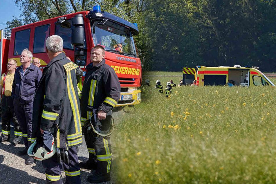Segelflieger muss bei Pirna in Rapsfeld notlanden