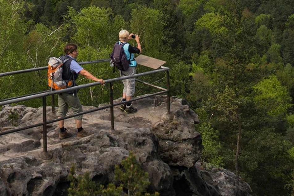 Die Forststeig-Trekkingtour führt über zwölf Tafelberge und 17 Aussichtspunkte.