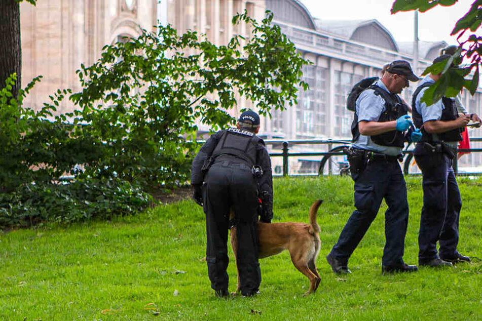 """""""Effekt ausgeblieben"""": Hat Polizei keine Chance gegen Drogendealer?"""