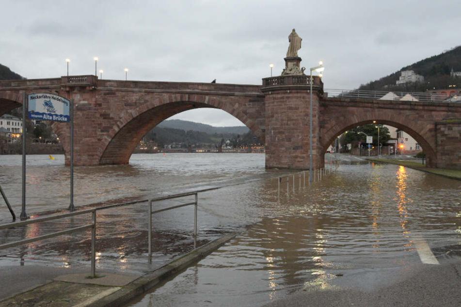 In Heidelberg trat am Montag der Neckar aus seinem Flussbett, überflutete die B37.