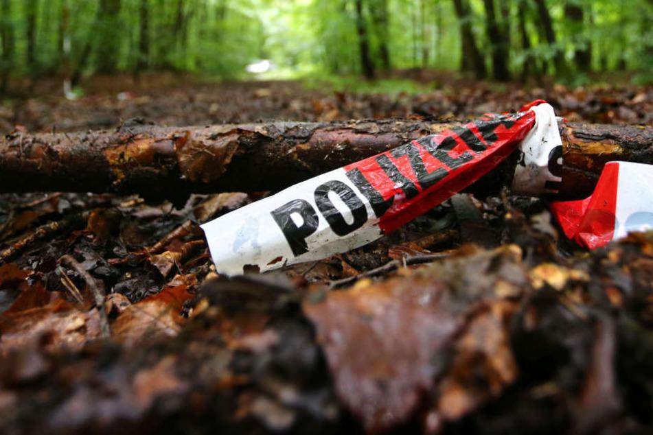In diesem Waldstück wurde Markus Würth wiedergefunden.