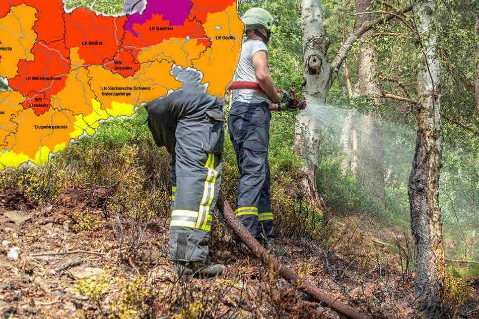 Feuerwehreinsatz: Waldbrand im Erzgebirge
