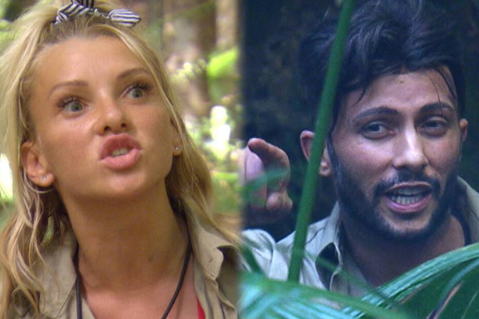 Im Dschungel eskalierte der Streit zwischen dem einstigen Liebespaar.