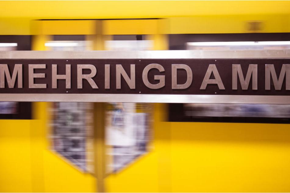 Ein Zug hält im U-Bahnhof Mehringdamm.