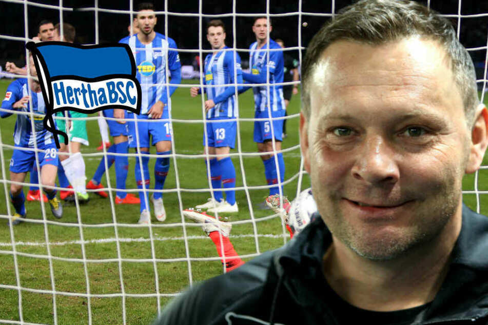 """""""Das war nicht sein Tor"""": Verliert Pizarro durch Dardai noch den Tor-Rekord?"""