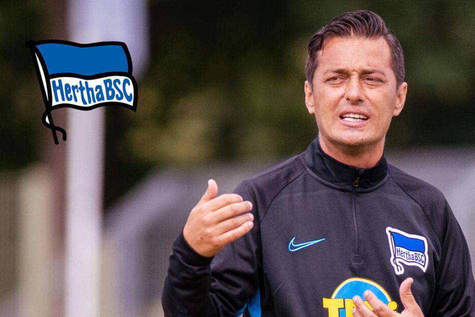 Hertha-Trainer Covic muss wochenlang auf Youngster verzichten