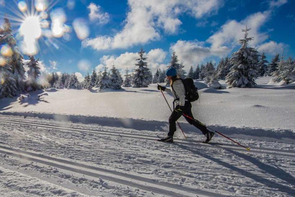 Für Langläufer sind den Angaben nach rund 1.400 Kilometer Loipen gespurt.
