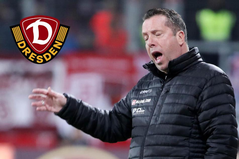 Dynamo-Coach Kauczinski sucht Schlüssel für 90 starke Minuten