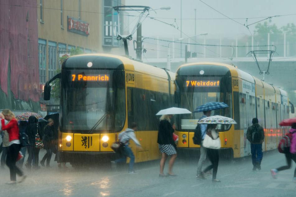 Immer wieder überraschten heftige Regenschauer die Dresdner.