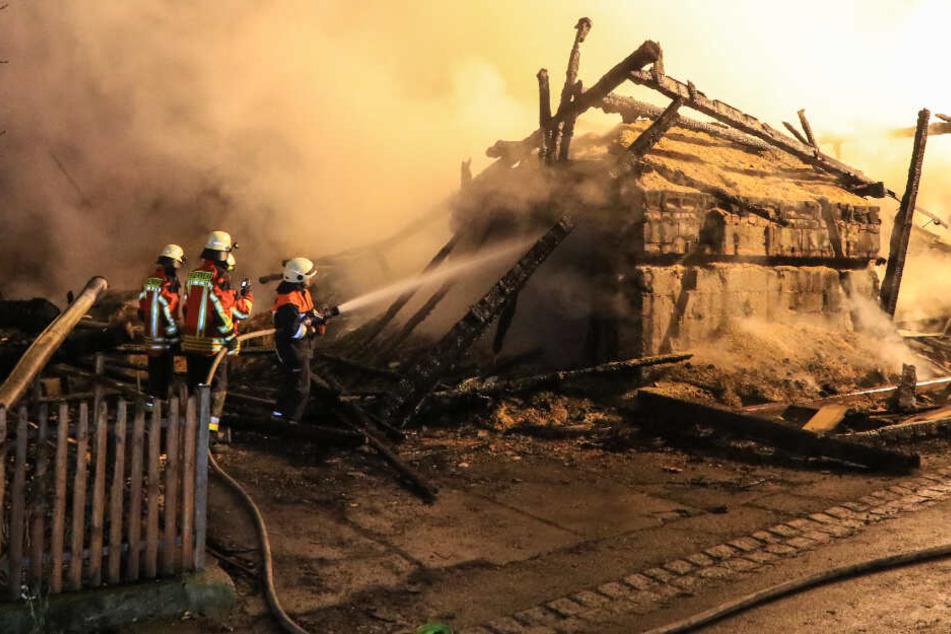 Bauernhof steht in Flammen: Mehrere Verletzte