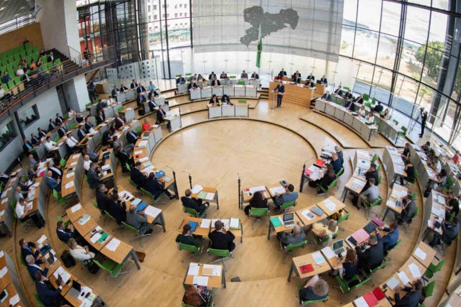 Am 1. September wird in Sachsen ein neuer Landtag gewählt.