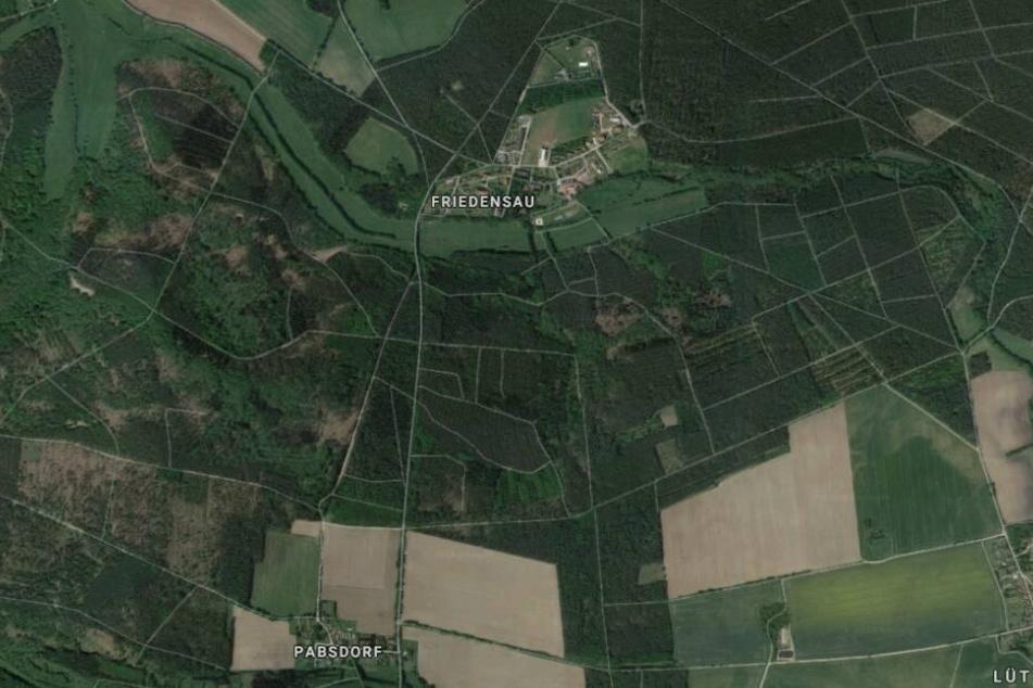 Das Unglück ereignete sich auf der Straße zwischen Pabsdorf und Friedensau.