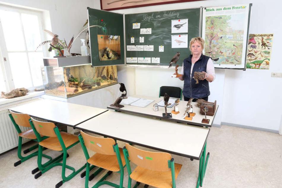 Der Unterrichtsraum der Tierparkschulebleibt bis auf Weiteres leer, ein neuer Lehrer fehlt.
