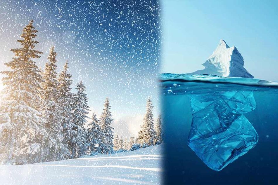 Schock-Studie enthüllt: Es schneit Mikroplastik!