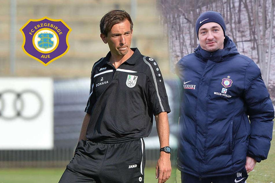 Machen es die Veilchen wie die Bayern? Daniel will Bruder André als Co-Trainer!