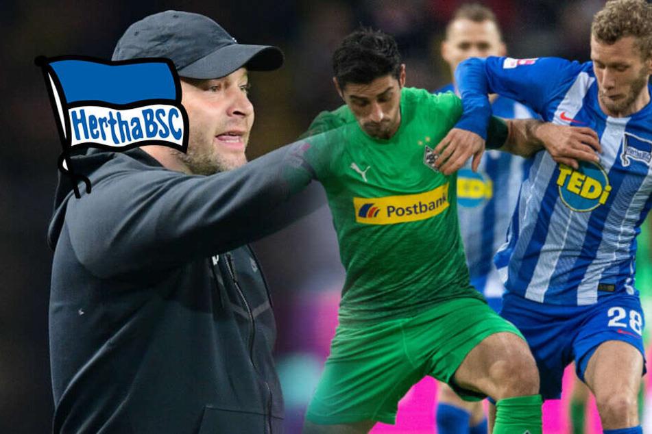 Hertha will Wiedergutmachung: Lustenberger droht Saison-Aus