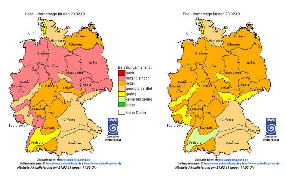 Der Pollenflug-Gefahrenindex wird vom DWD täglich aktualisiert.