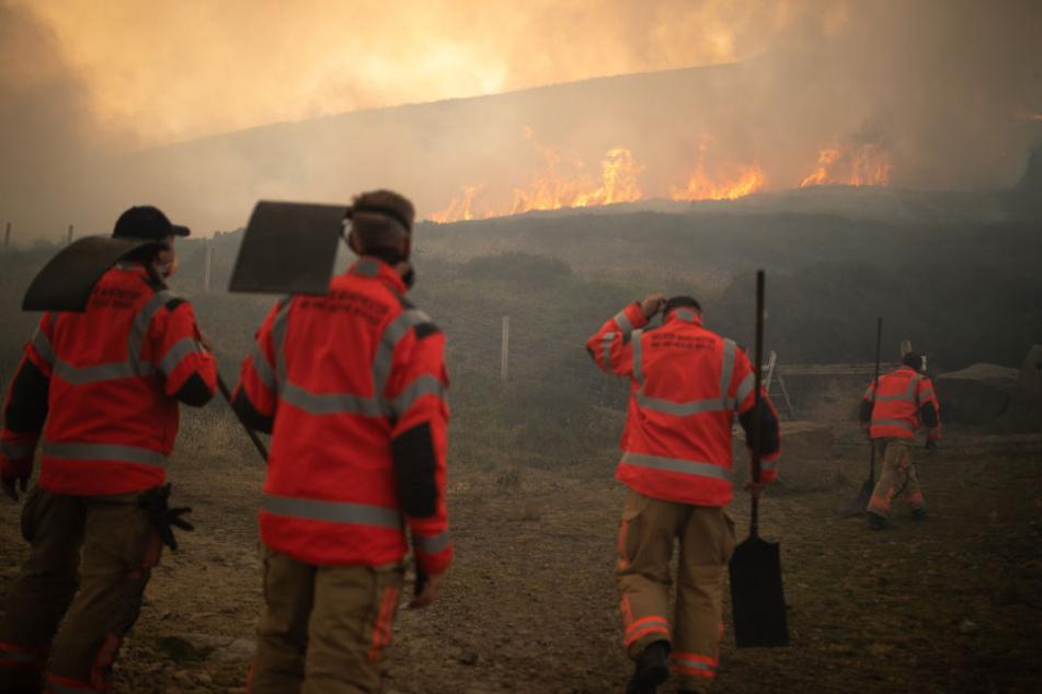 Moorlandschaft in Flammen: Dutzende Wohnhäuser evakuiert