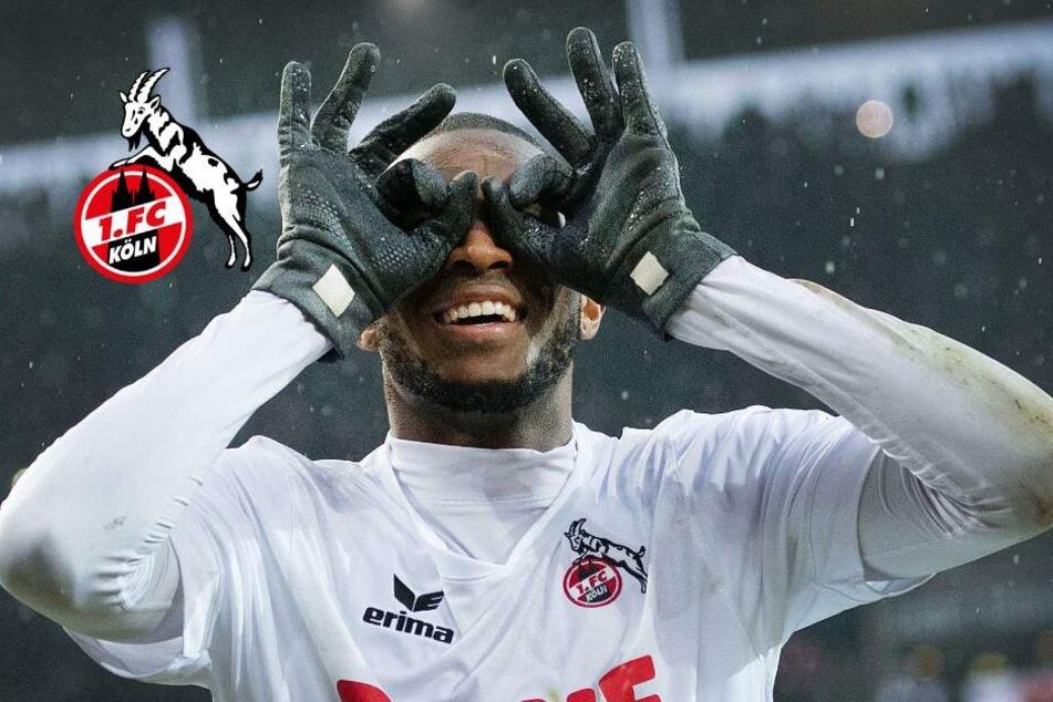 Kaum zu glauben: 1. FC Köln lehnte 75 Millionen Euro für Modeste ab!