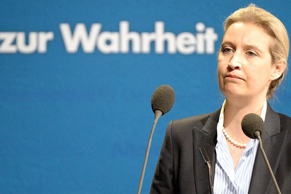 Alice Weidel (40).