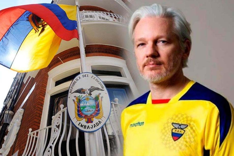 Wie geht es mit Wikileaks-Gründer Julian Assange weiter?