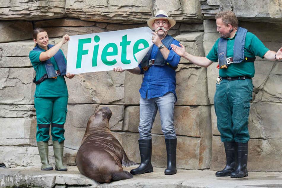 Horst Lichter enthüllt mit den Tierpflegern den Namen des Walross-Nachwuchses.