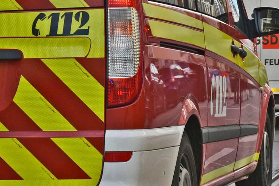 Zwei Feuerwehrmänner rückten zur Rettung des Tieres in die Pariser Straße aus. (Symbolbild)