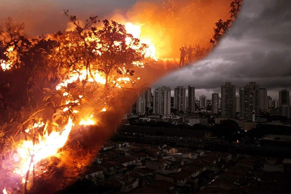 Brennt Der Amazonas Immer Noch