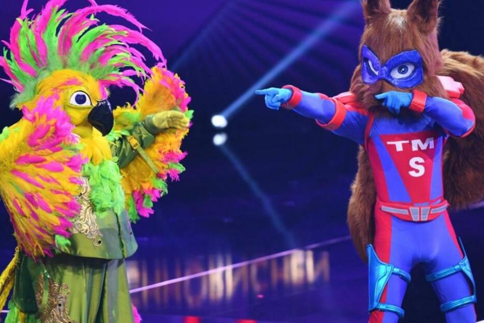 Kakadu und Eichhörnchen: Wer steckt unter diesen Kostümen?