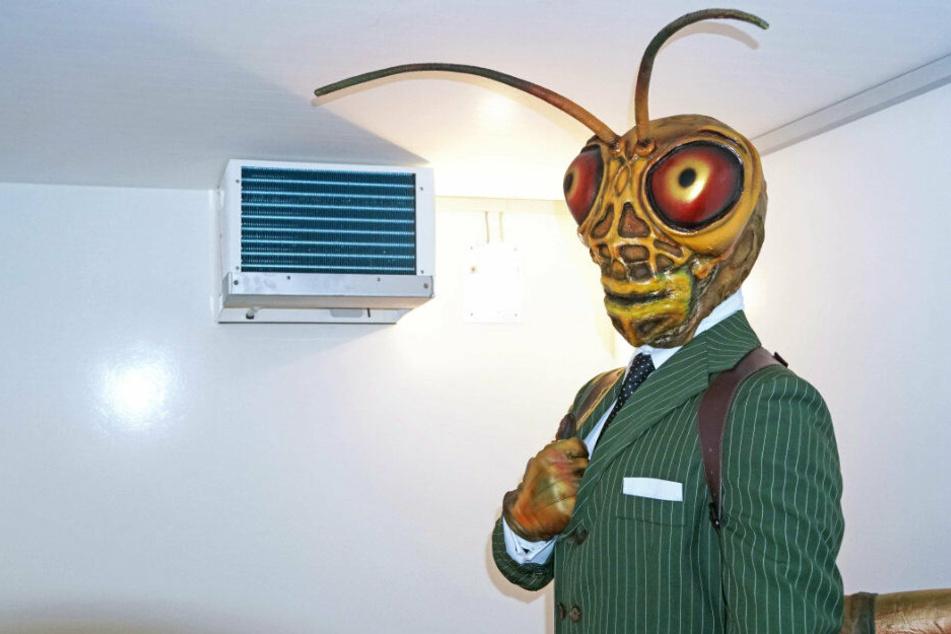 Der Grashüpfer genießt die Abkühlung. Wer wohl unter der Maske steckt?
