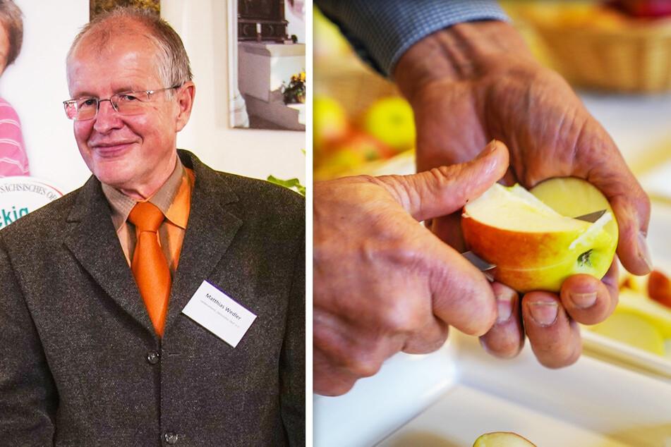 Matthias Wedler (62) vom Sächsischen Obstbauernverband. Die Bauern sind zufrieden mit den diesjährigen Ernteerwartungen.