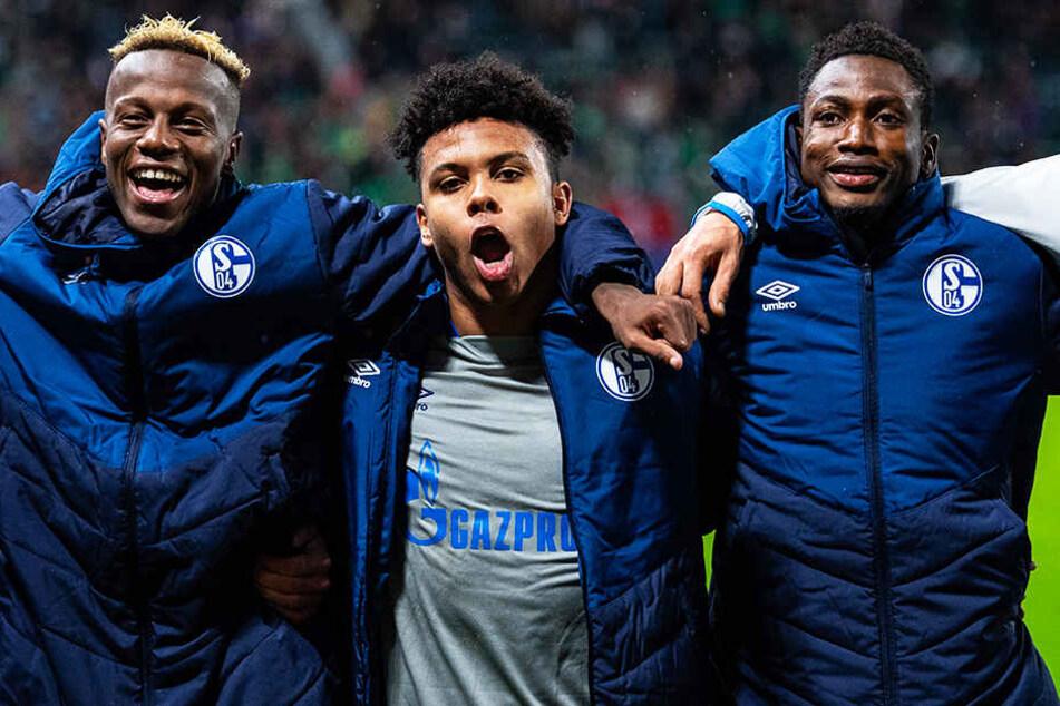 Schalkes Torschütze Weston McKennie (Mitte) bejubelt mit seinen Teamkollegen Hamza Mendyl (l.)und Abdul Rahman Baba (r.) den wichtigen Auswärtssieg bei Lokomotive Moskau.