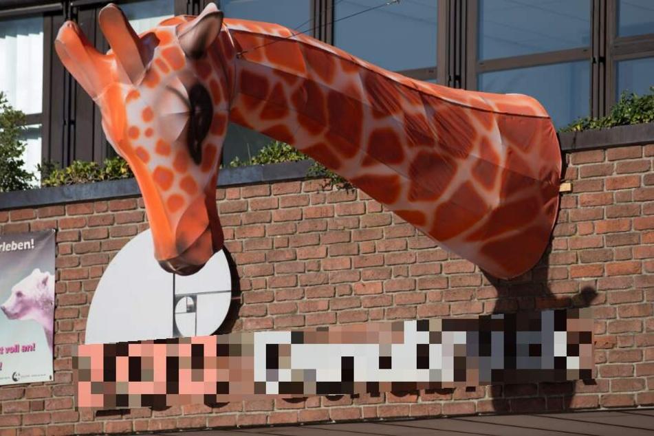 """Dieser Zoo sucht keine Tierpfleger, sondern """"Erschrecker"""""""