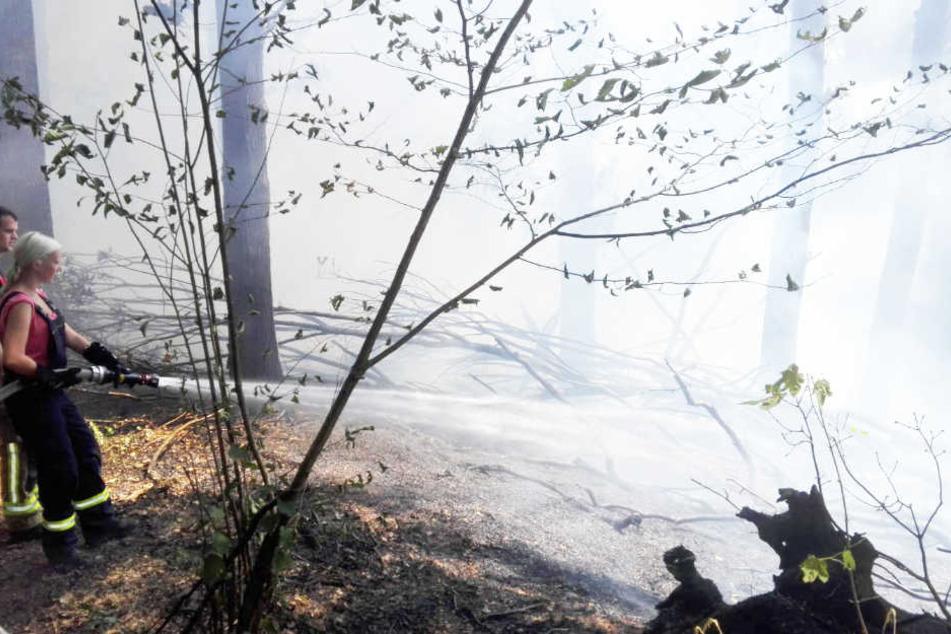 Zwei Feuerwehrkräfte bei der Brandbekämpfung. Der Löschvorgang in einem Waldstück bei Grimma-Süd wird sich noch mehrere Stunden hinziehen.