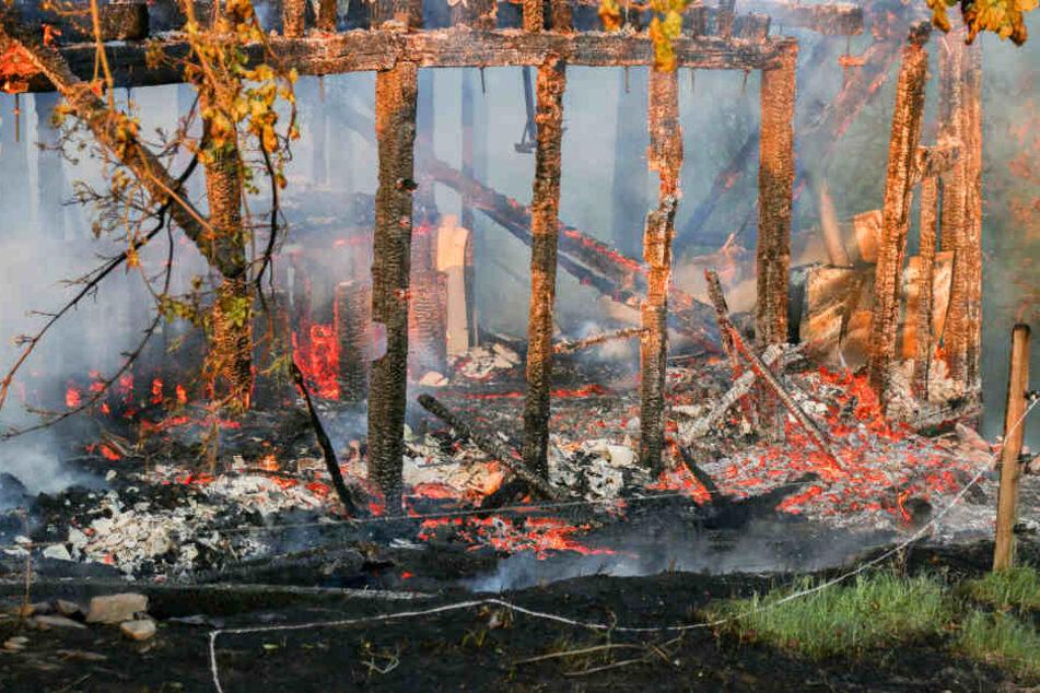 Jugendclub brennt komplett nieder