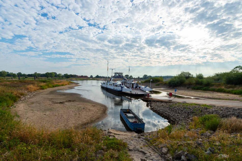 """Die Elbfähre """"Tanja"""" überquert bei Niedrigwasser den Fluss bei Neu Darchau."""