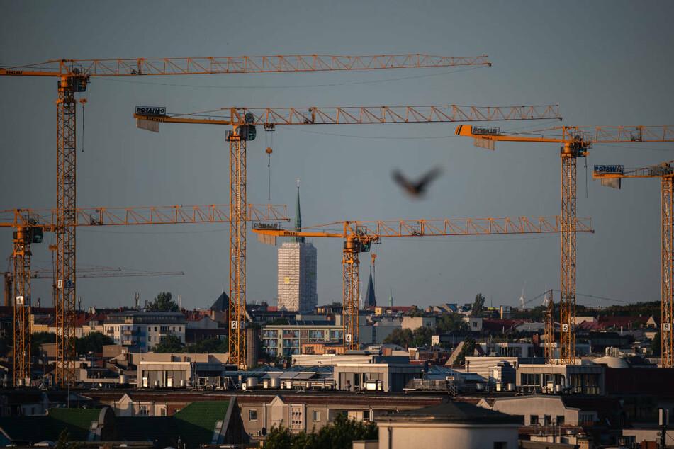 """Kräne im Bezirk Berlin-Mitte. Wohnungspolitik ist einer der Schwerpunkte im Wahlprogramm der Berliner FDP, wobei die Partei auf """"Neubau, Umbau, Ausbau"""" setzt. (Archivfoto)"""