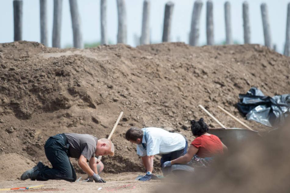 Der außergewöhnliche Friedhof trat bei Ausgrabungen am Neubaugebiet Sonntagsfeld zu Tage, teilte die Stadtverwaltung am Donnerstag mit. (Symbolbild)