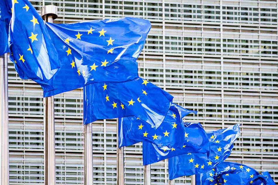 Noch bis Sonntagabend wählen die EU-Mitgliedssaaten das 9. Europäische Europaparlament.