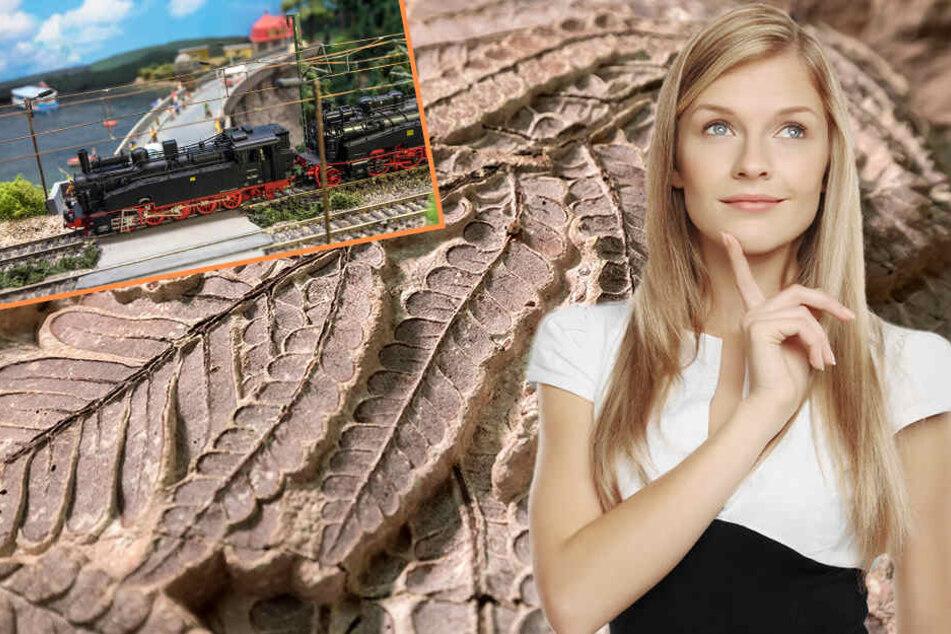 Chemnitz: Modellbahntagen, Familienplanetarium, Party & Co.: Hier könnt Ihr heute was erleben
